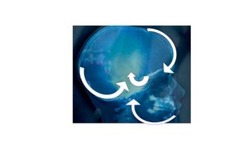 Bienvenue for Neurone miroir autisme